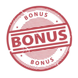 bonus_256